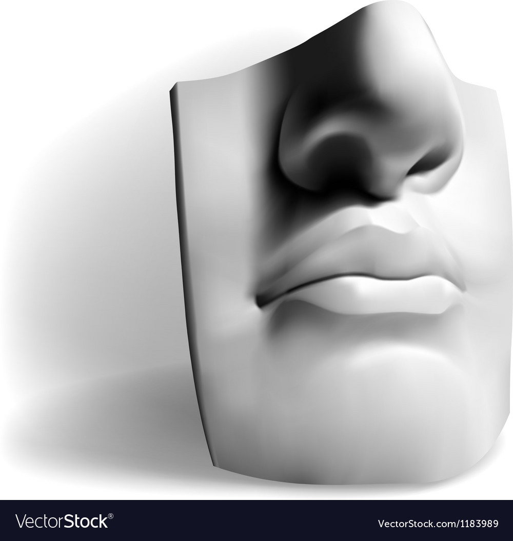 Detail of a famous statue by michelangelo - david vector