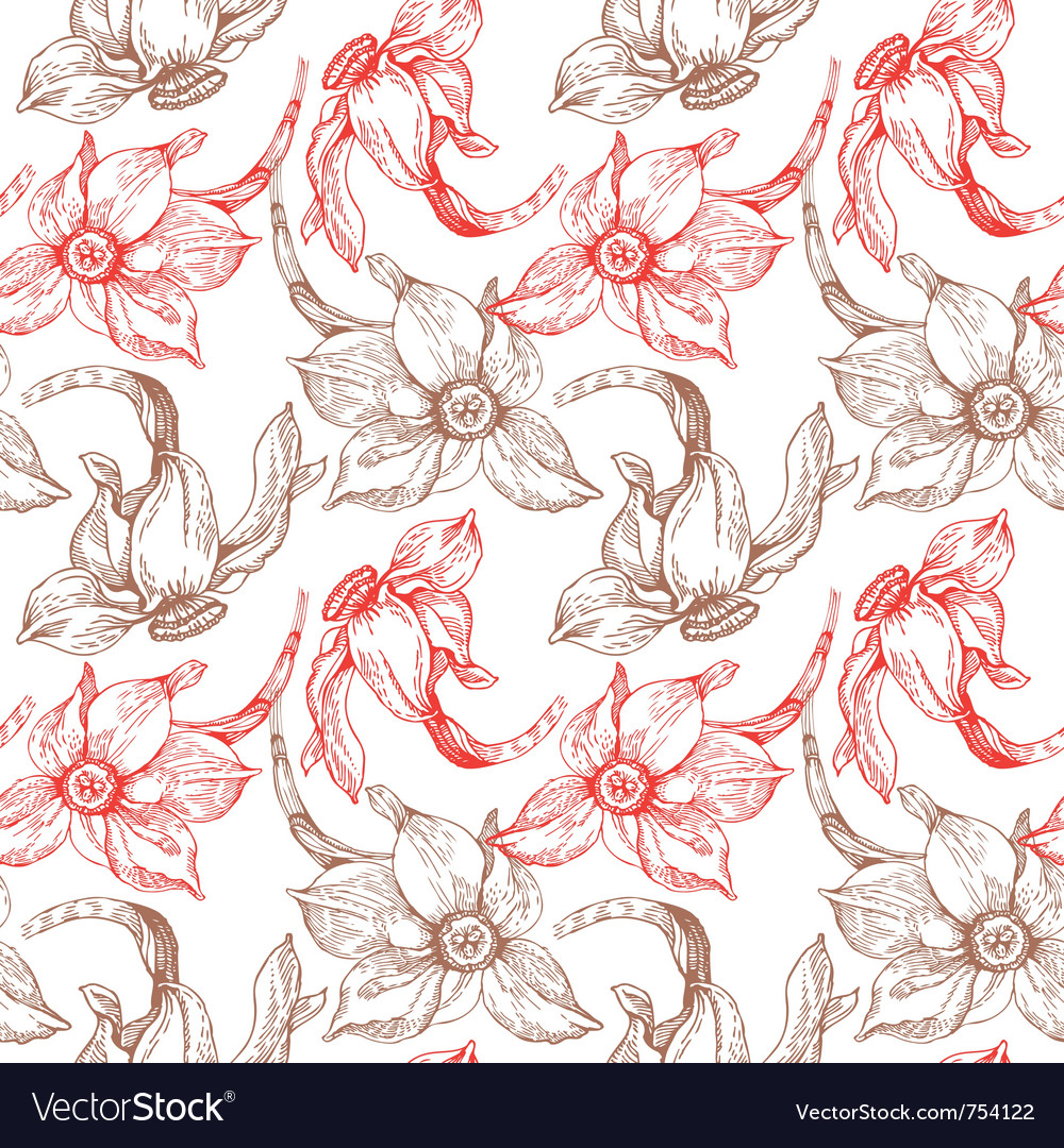 Floral seamless pattern with narcissus vector