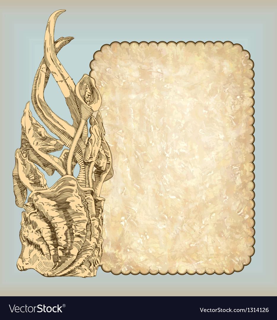 Sketch vintage frame design vector
