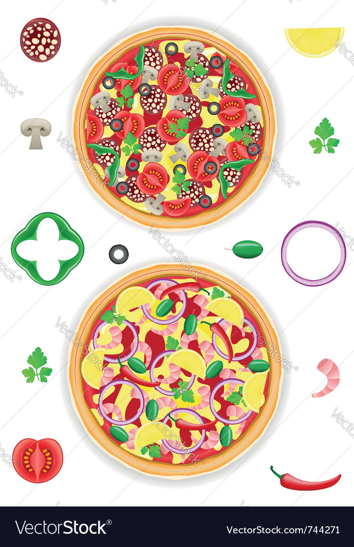 Pizza and components isolated on white background vector