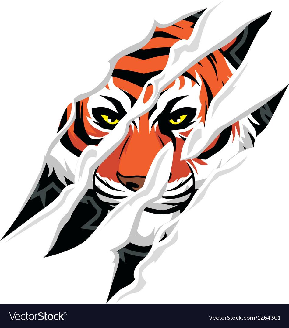 Tiger claw mark vector