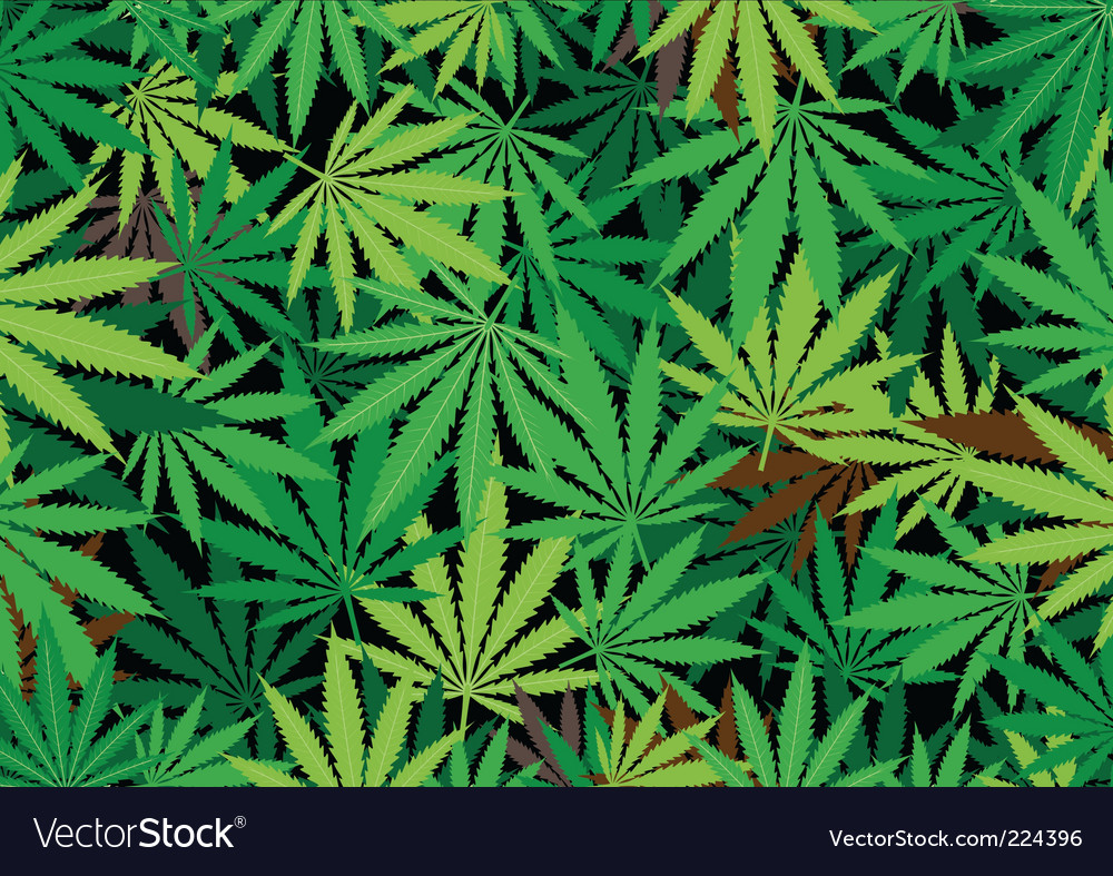 Hemp background vector