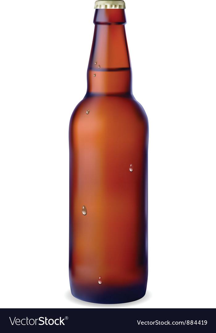 Dark bottle of beer vector