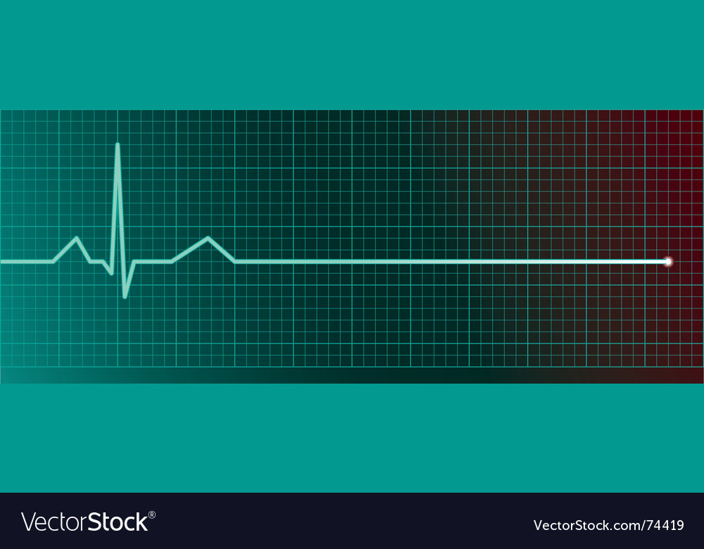 Heart rate monitor vector