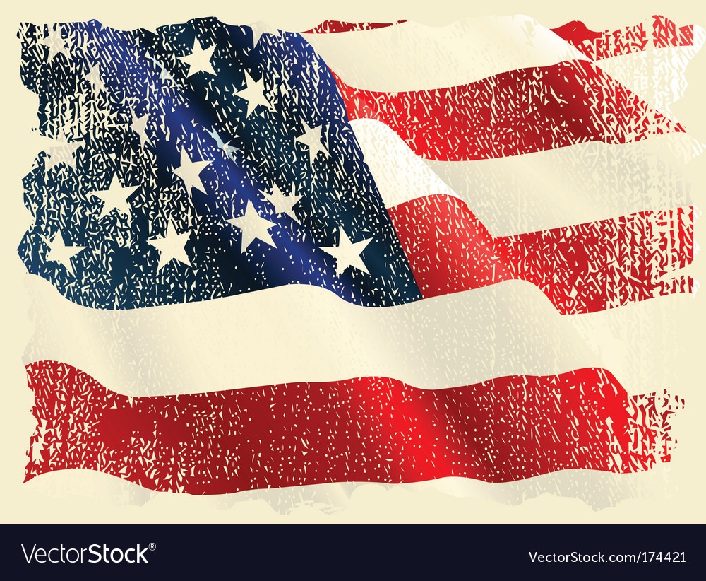 Usa flag theme vector