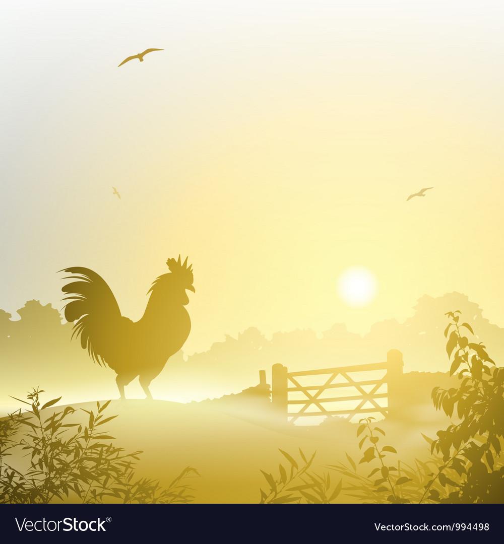 Cockerel rooster vector