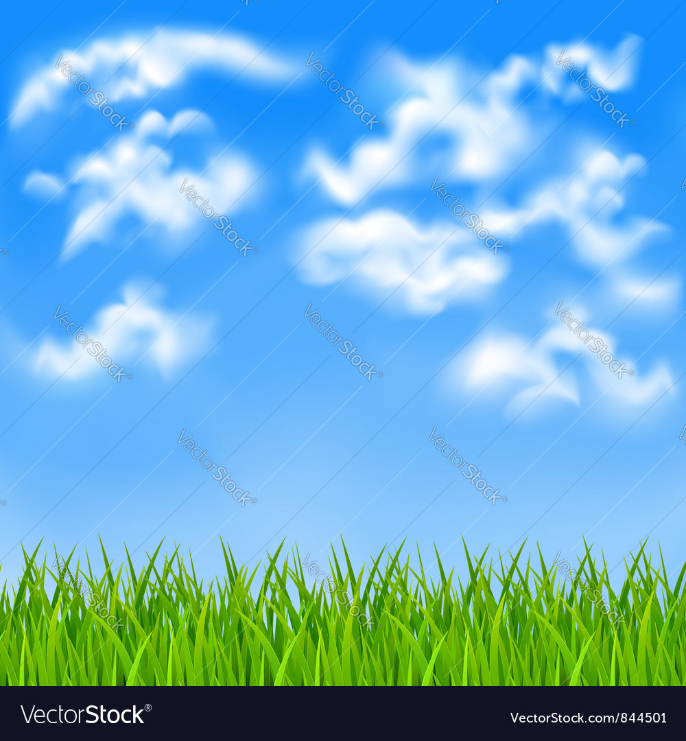 Background with blue sky vector