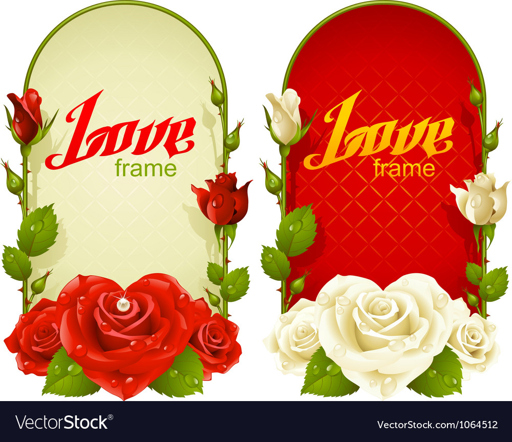 Rose frames vector
