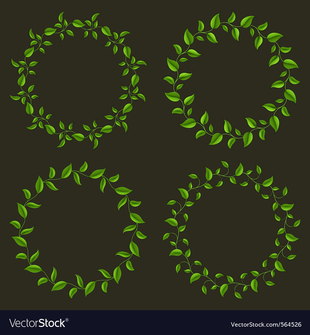 Circle frames from green leaves set vector