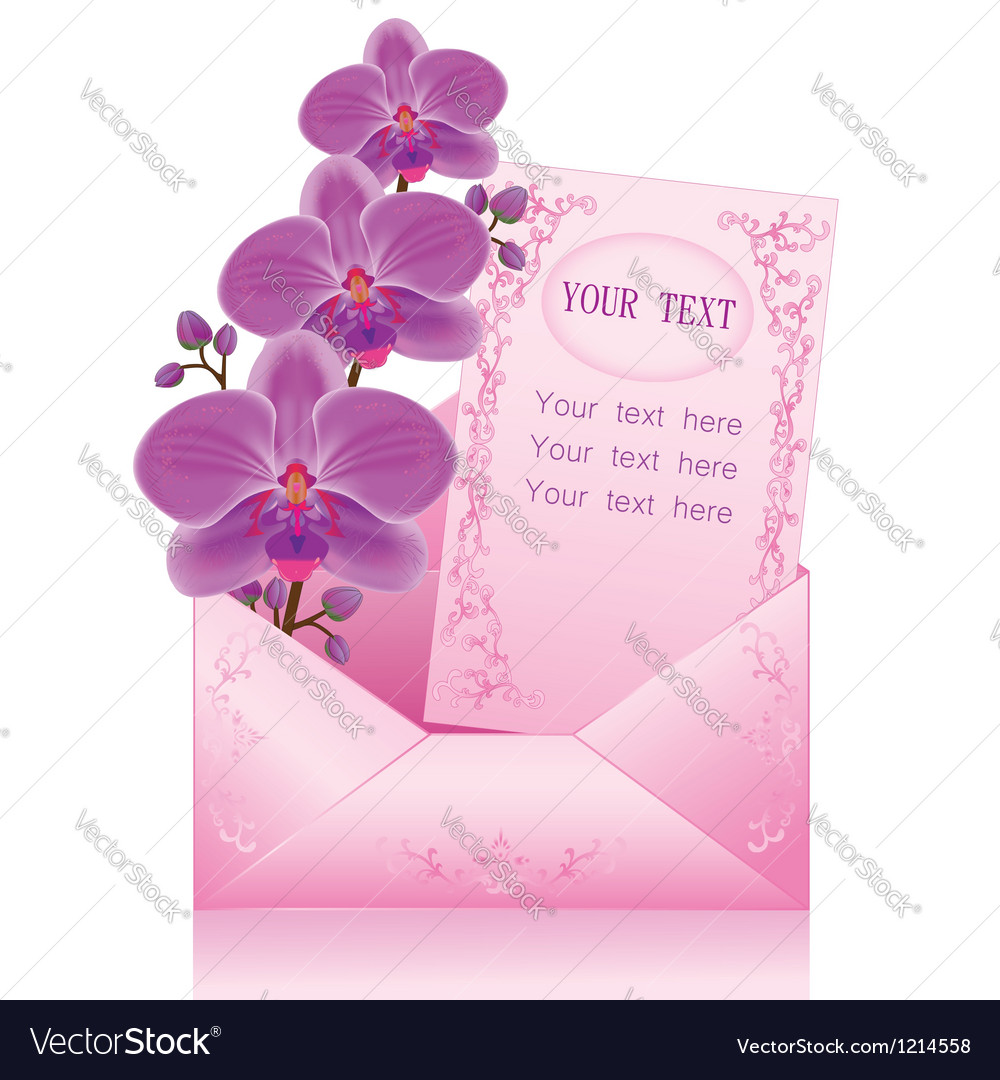 Flower orchid in envelope on white background vector