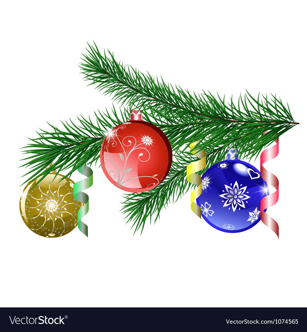 Christmas tree branch with christmas balls vector