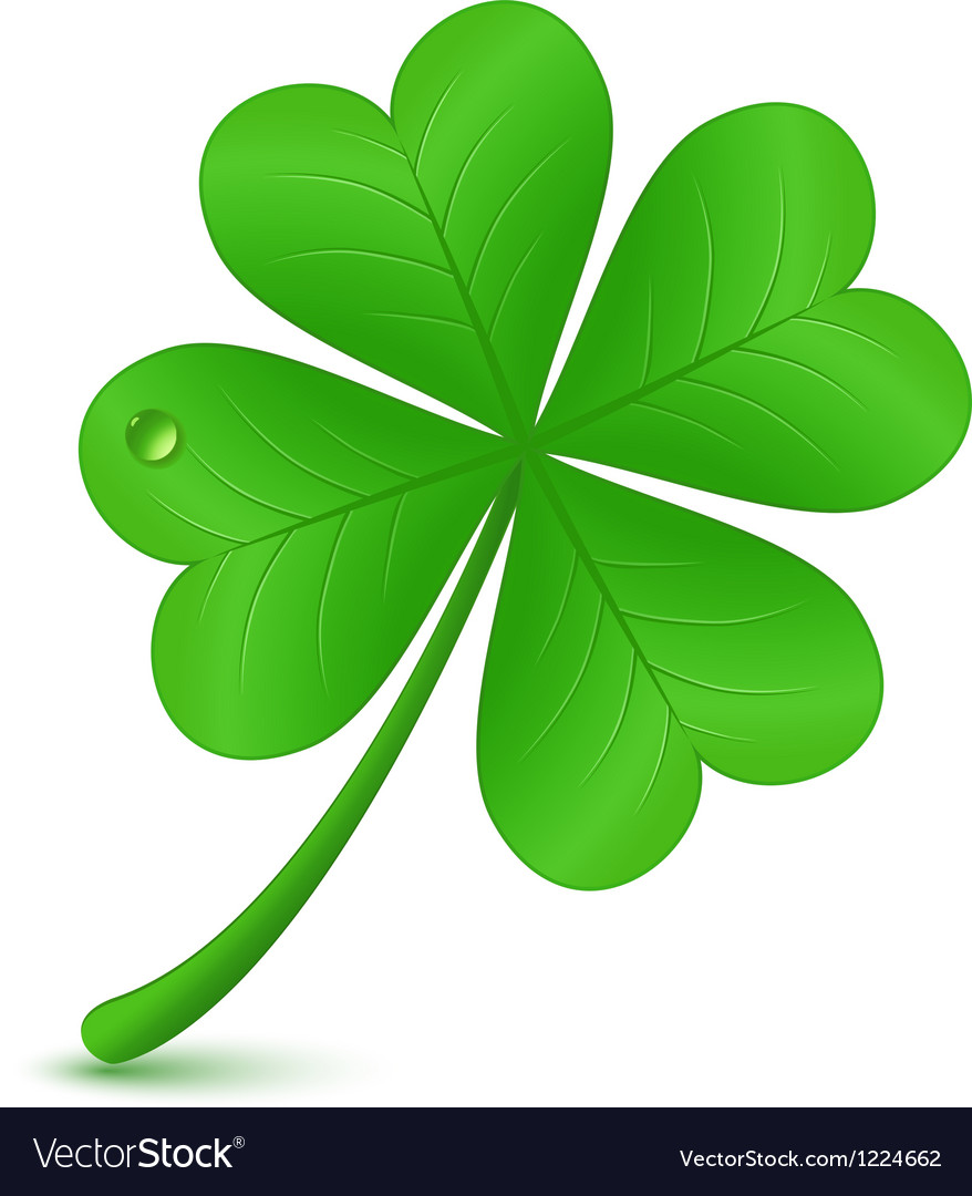 Four leaf clover st patricks day symbol vector