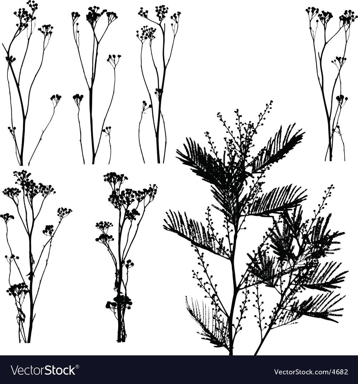Nature elements vector
