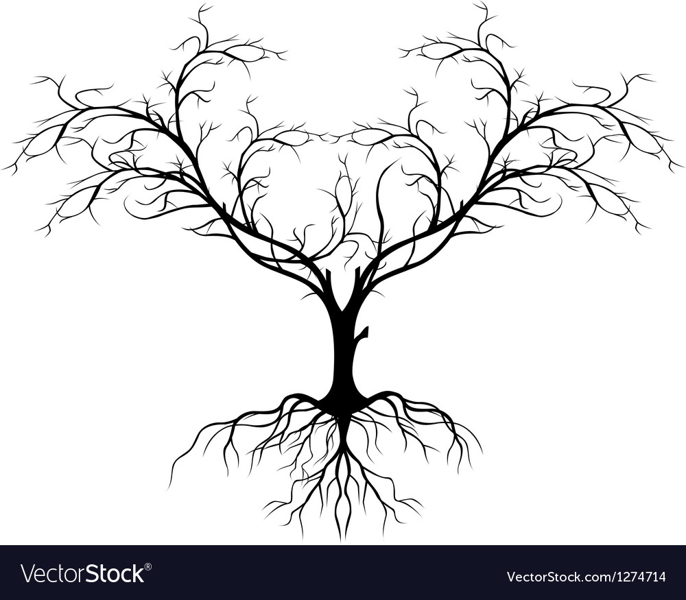 Tree silhouette without leaf vector