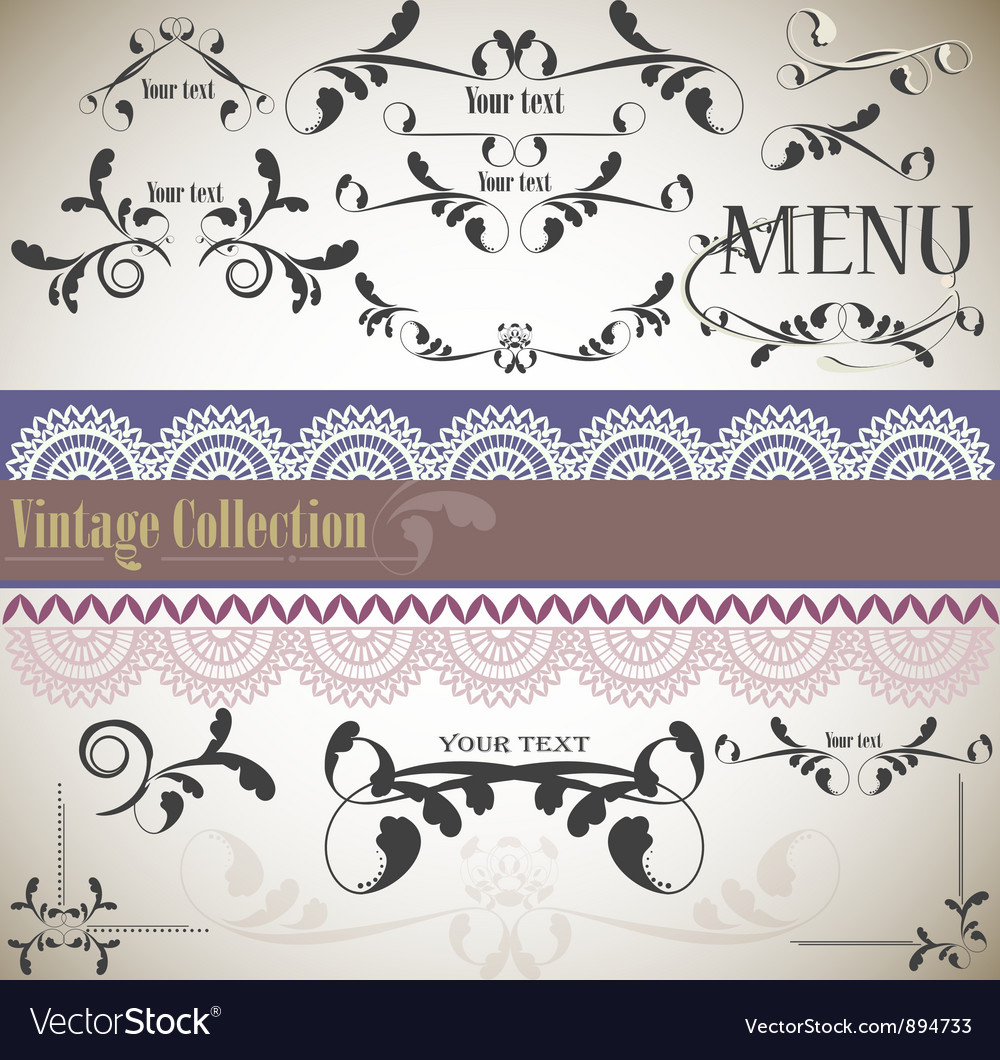 Calligraphic vintage design vector