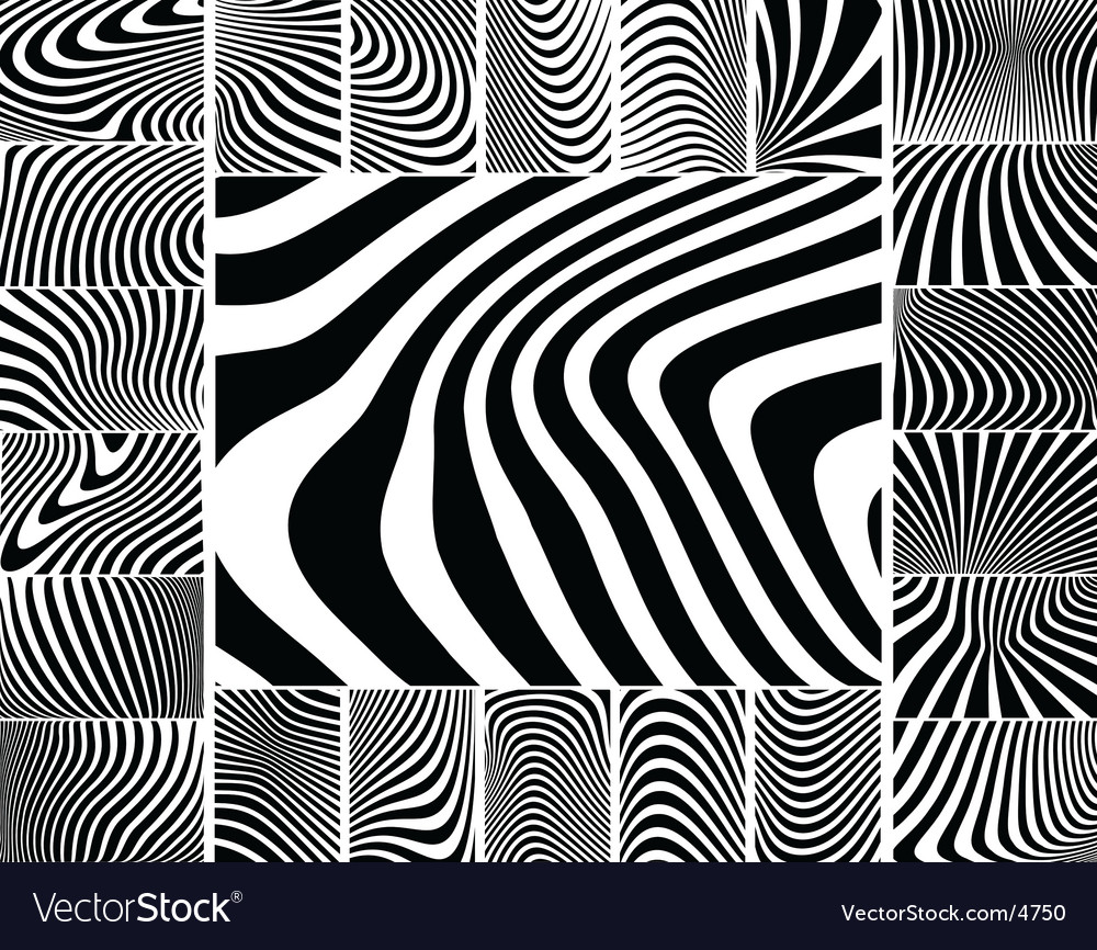 Zebra stripes vector