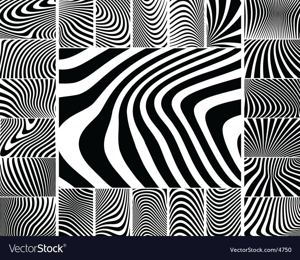 Zebra stripes vector
