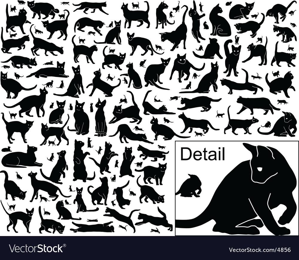 Cat outlines vector