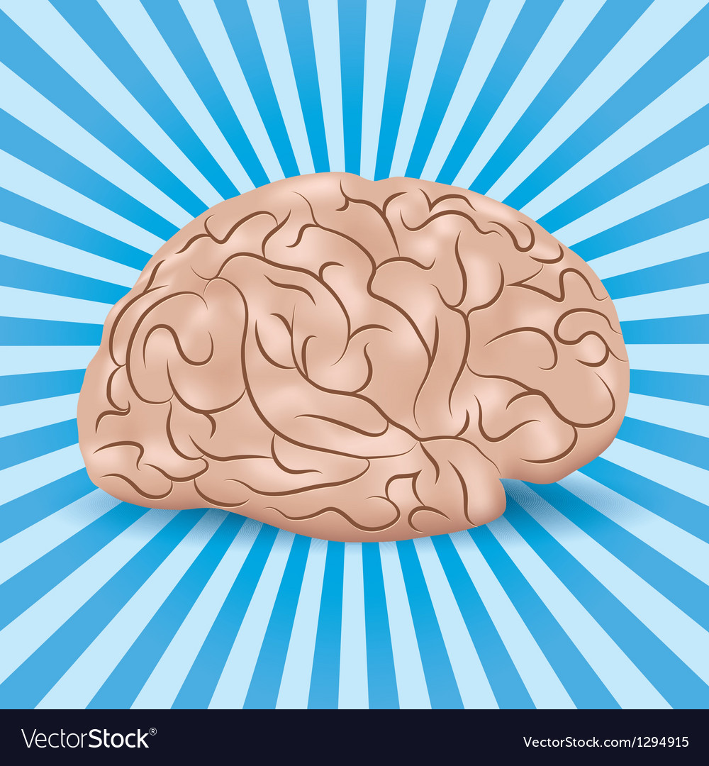 Healthy brain on a blue background with lines vector