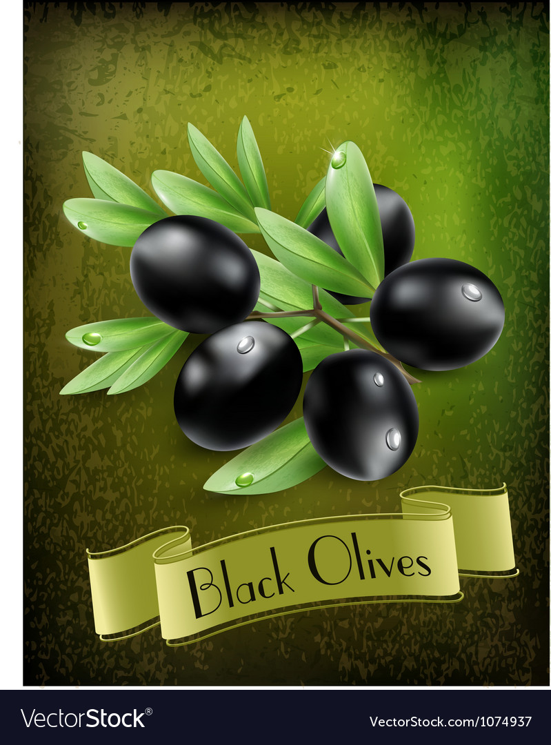 Background with black olives and a ribbon vector