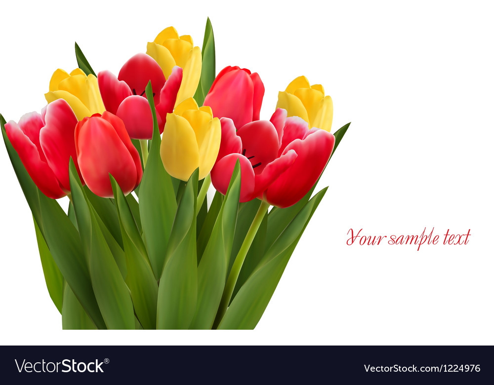 Bouquet with red and yellow flowers in white vector