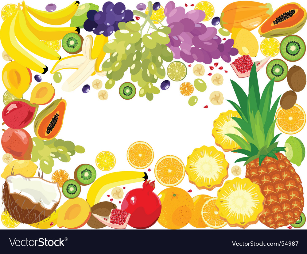 Fruits boarder vector