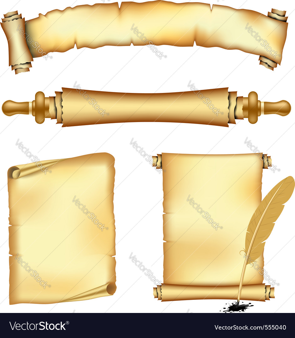 Vintage scrolls vector