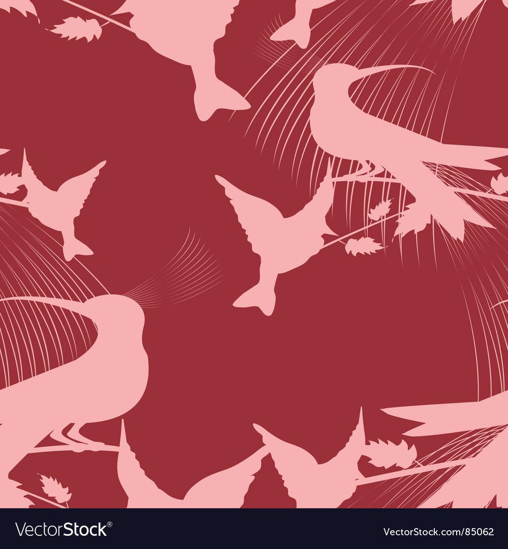 Paradise birds vector