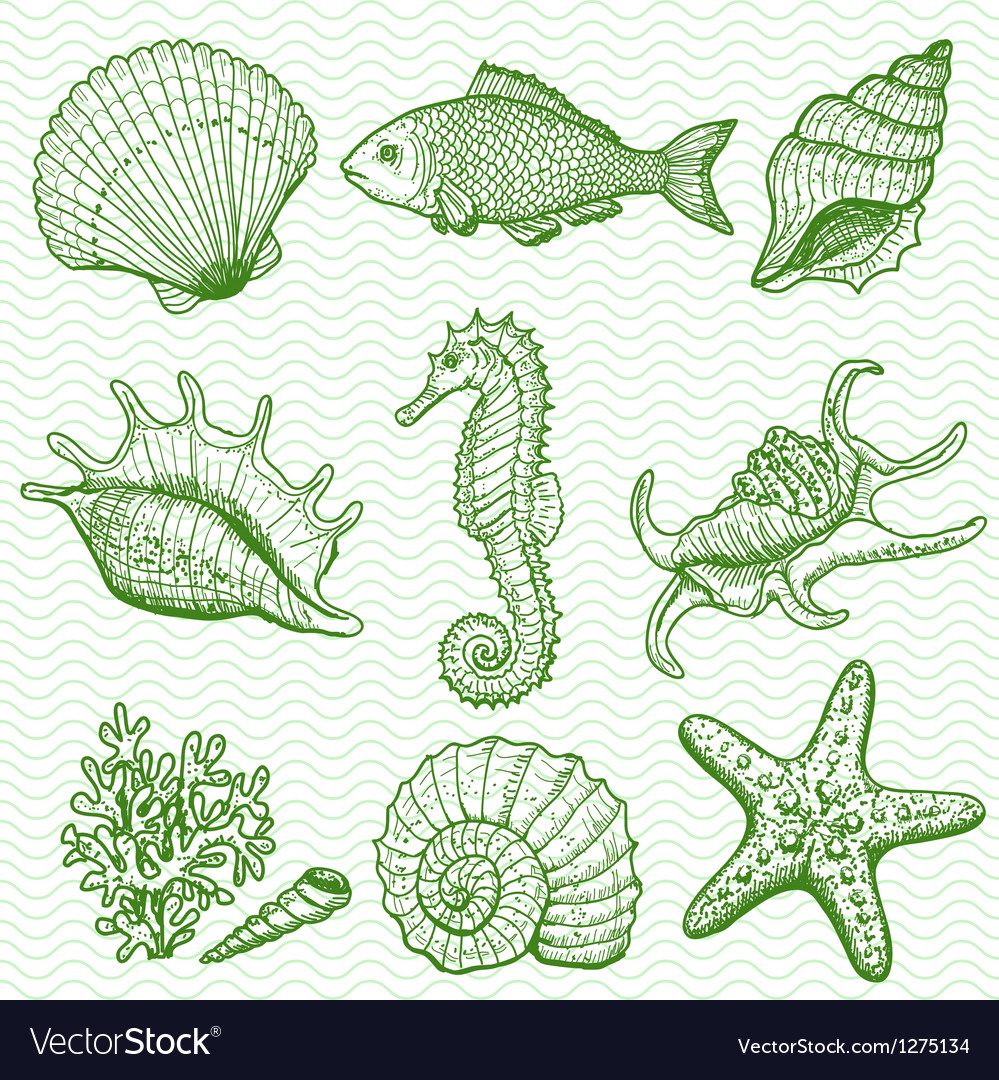 Sea collection original hand drawn vector