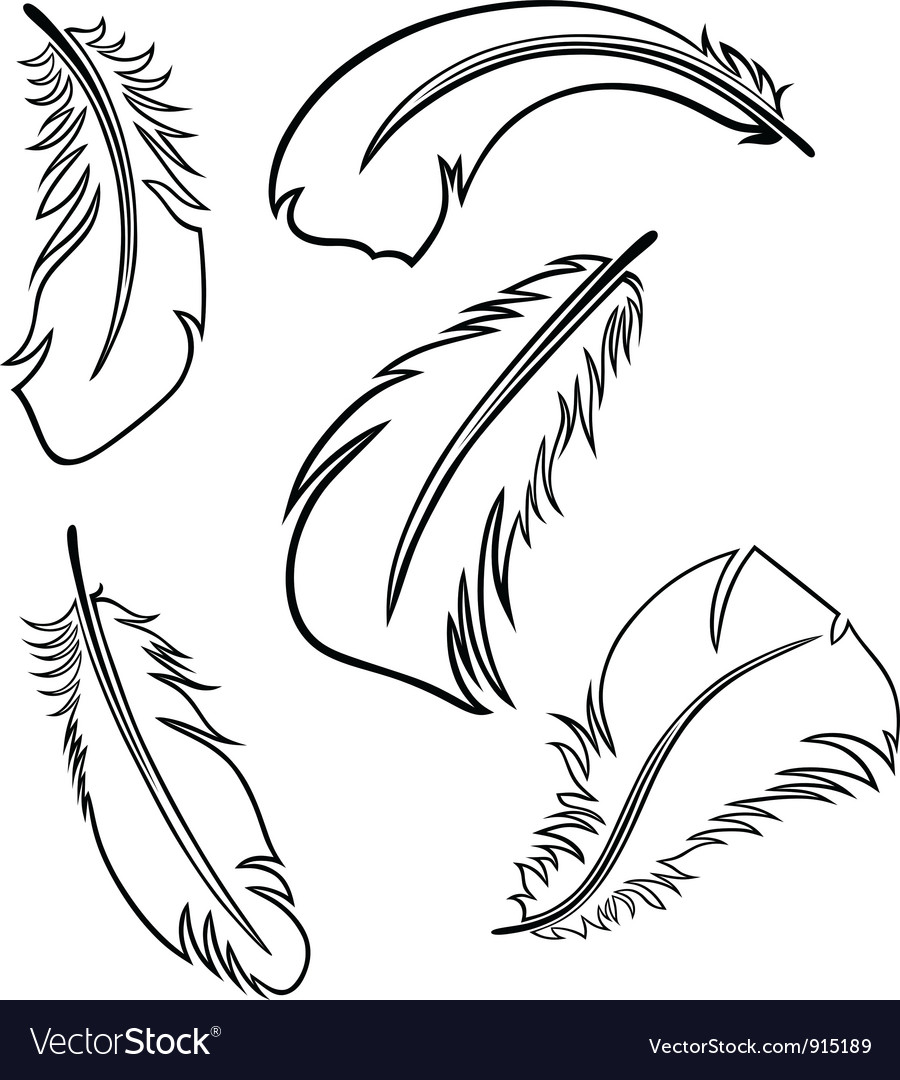 Displaying (12) Gallery Images For Feather Outline Clip Art...