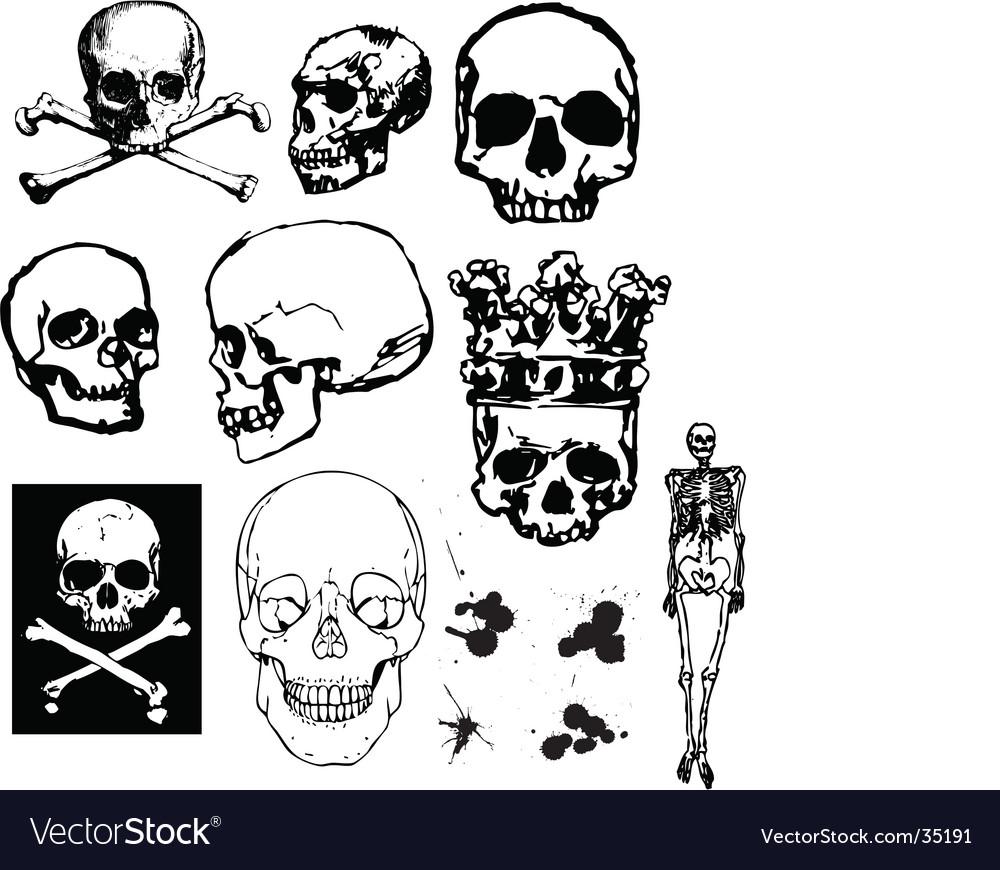 Grunge skulls and bones vector