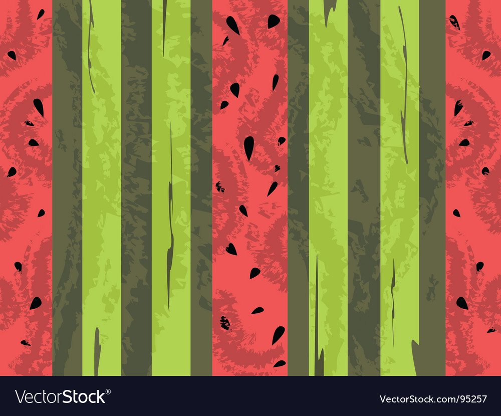 Watermelon grunge background vector