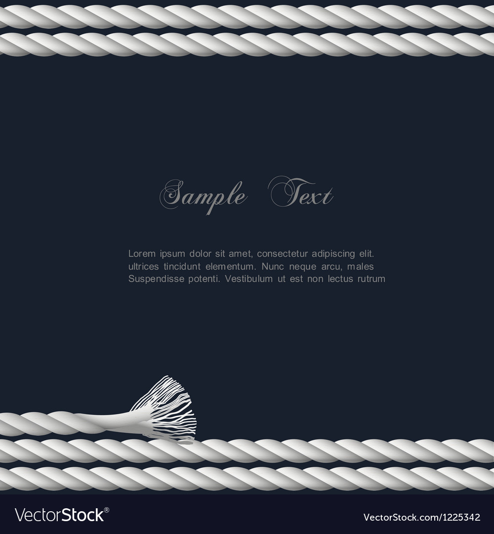 Background with marine rope vector