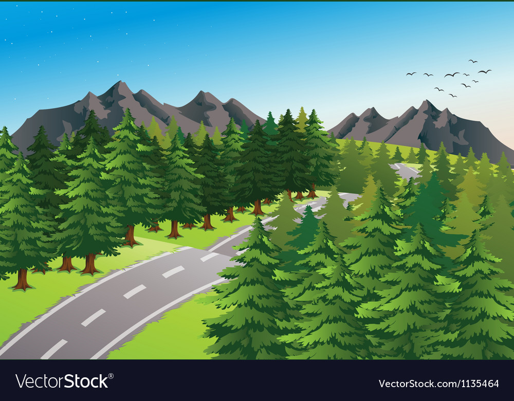 Road in beautiful nature vector