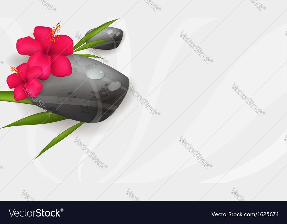 Hibiscus spa banner vector