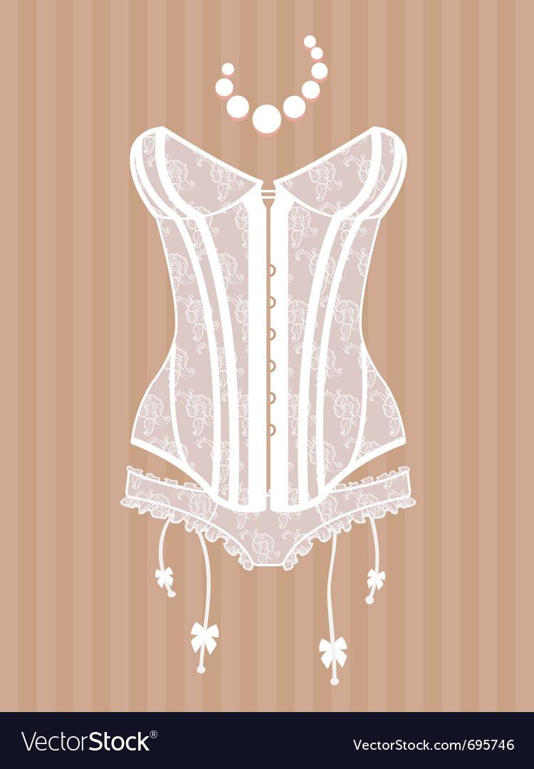 Vintage corset vector
