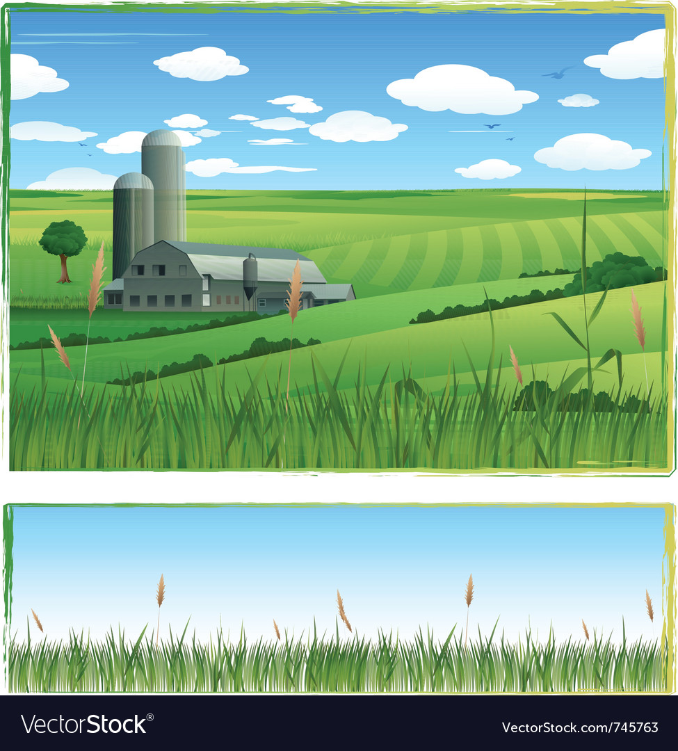 Farm harvest background vector