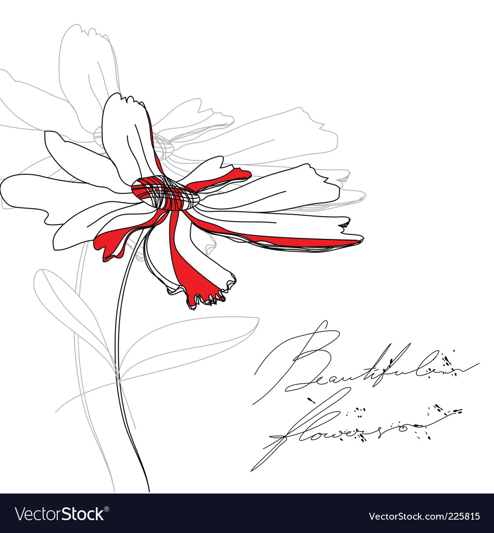 Beautiful flower vector