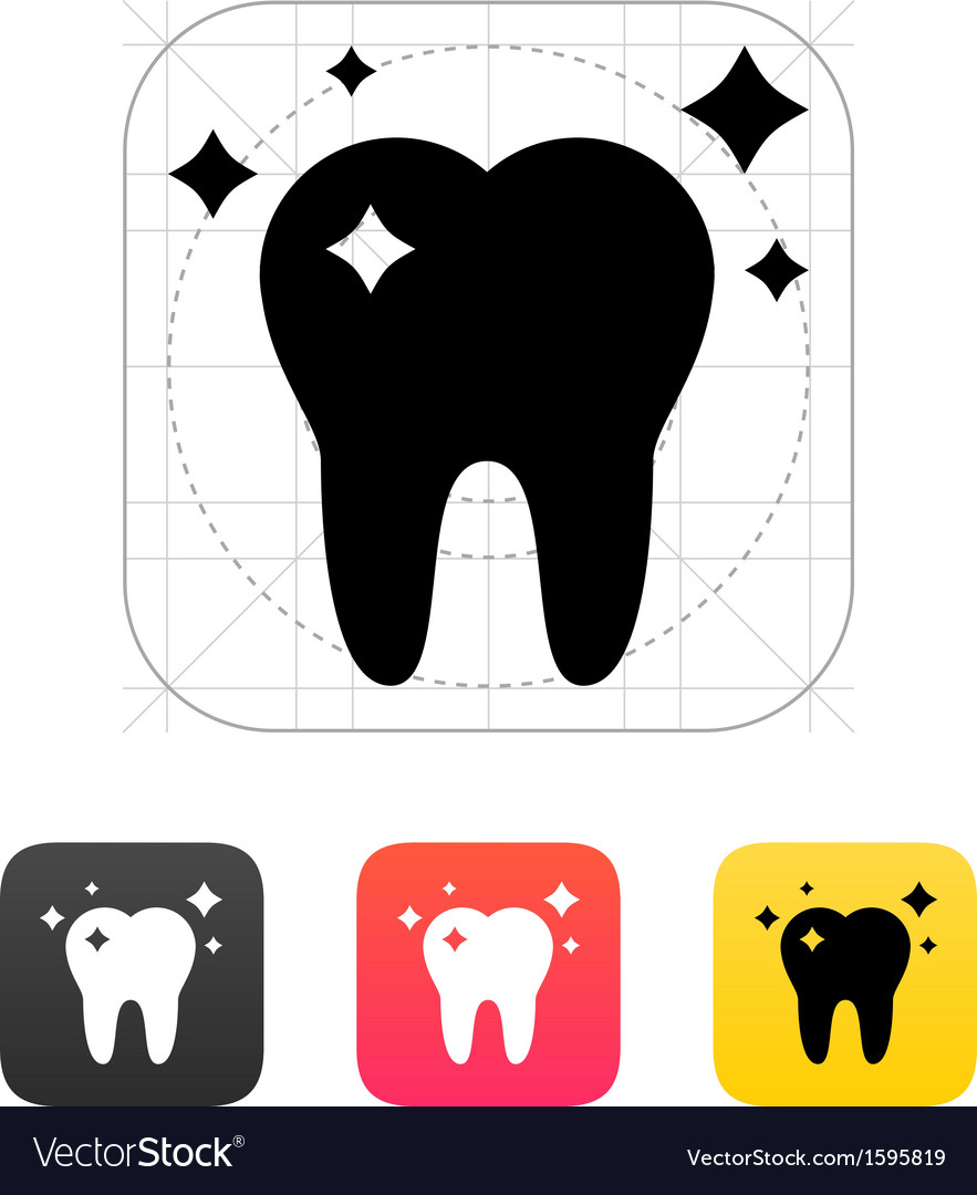 Shiny tooth icon vector