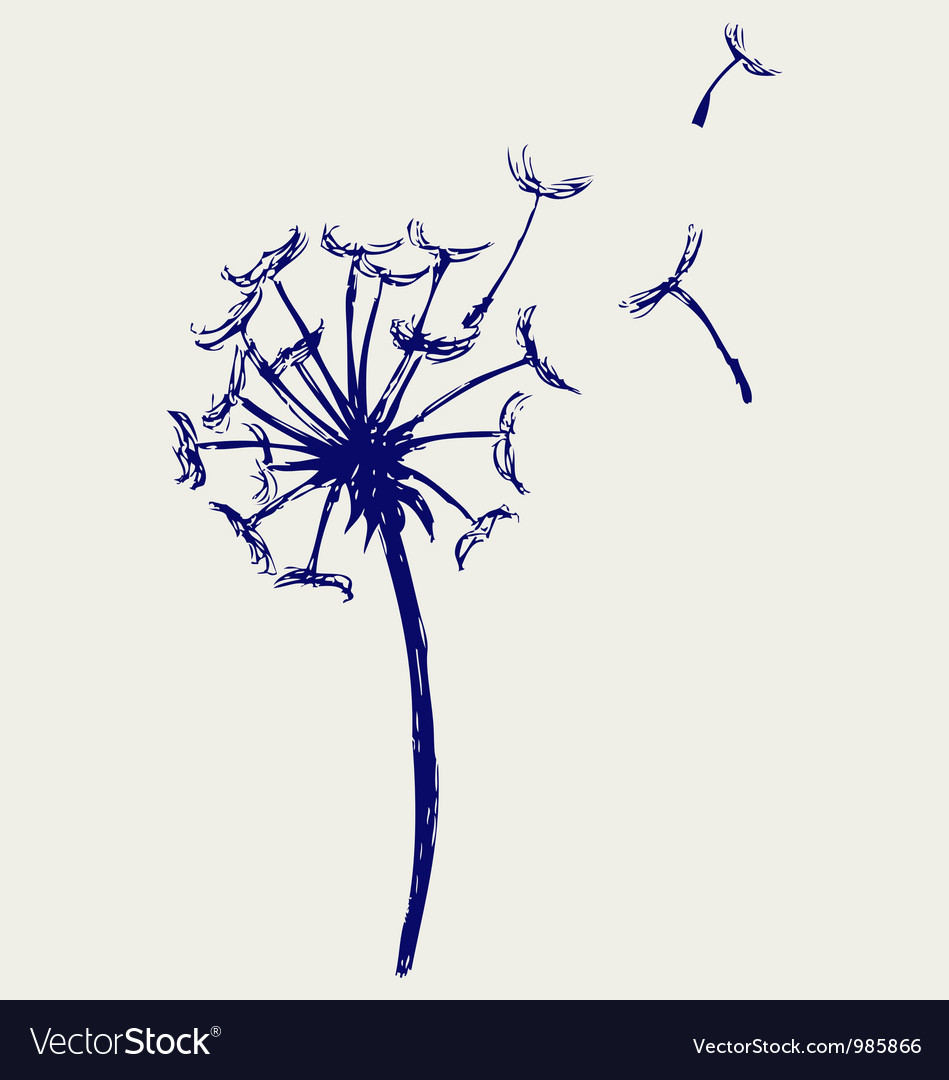 Blow dandelion vector