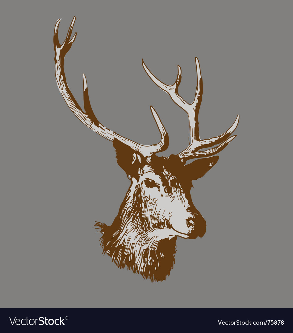 Free deer head vector