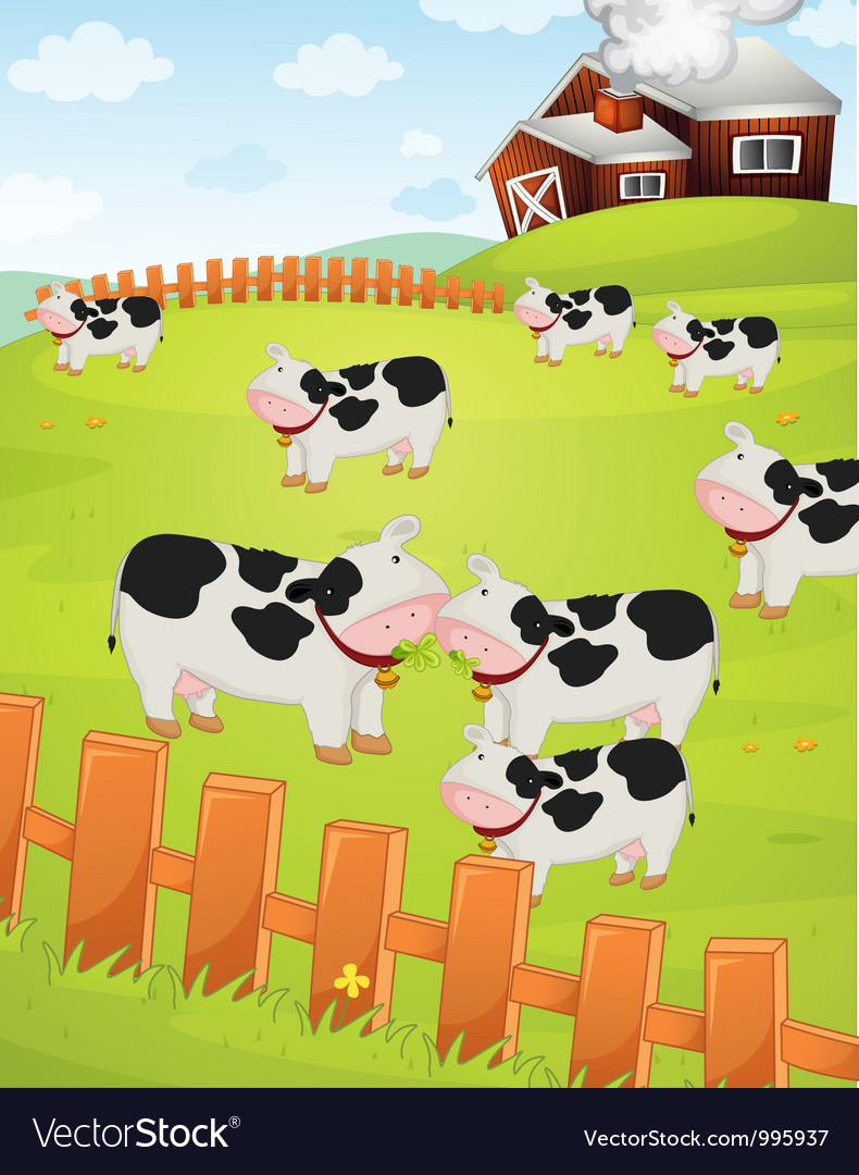 Cows on a farm vector