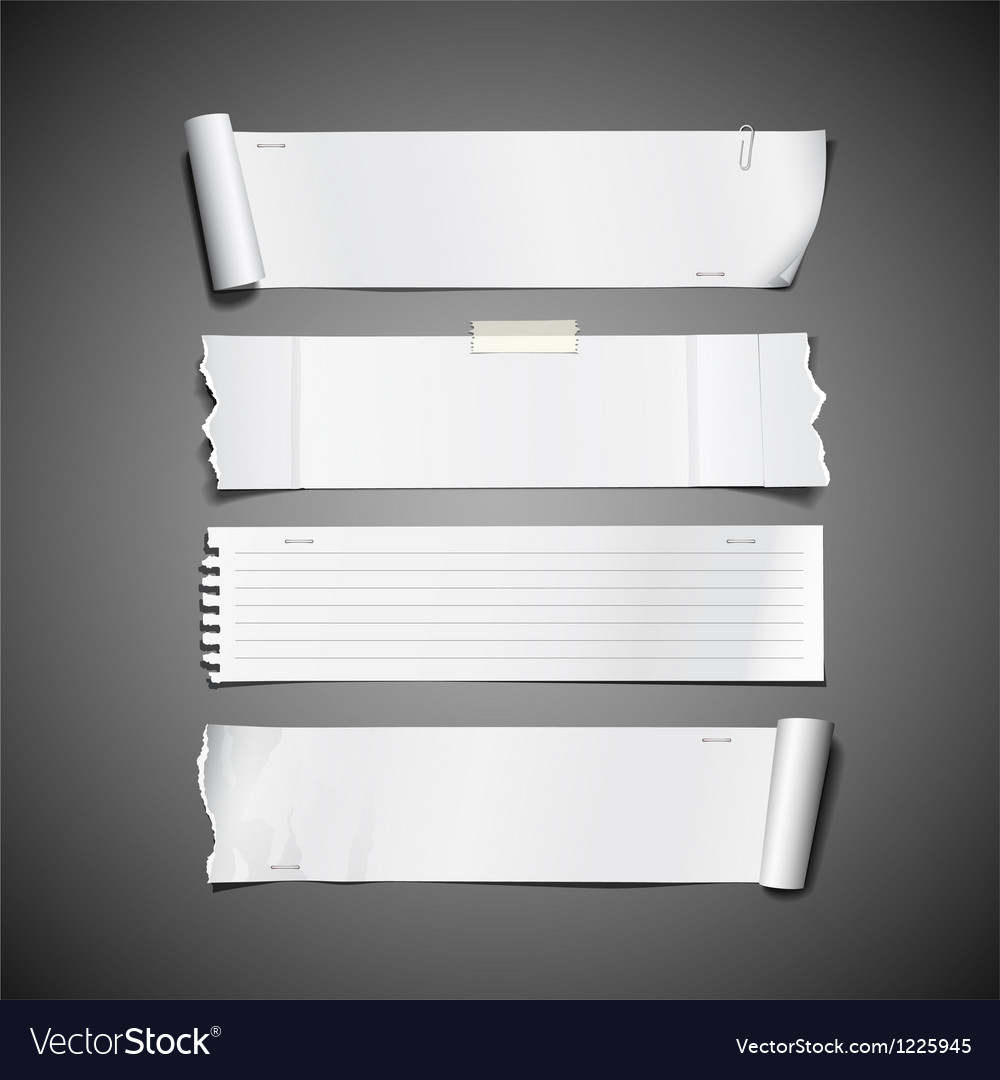 White paper roll ripped design long collections vector