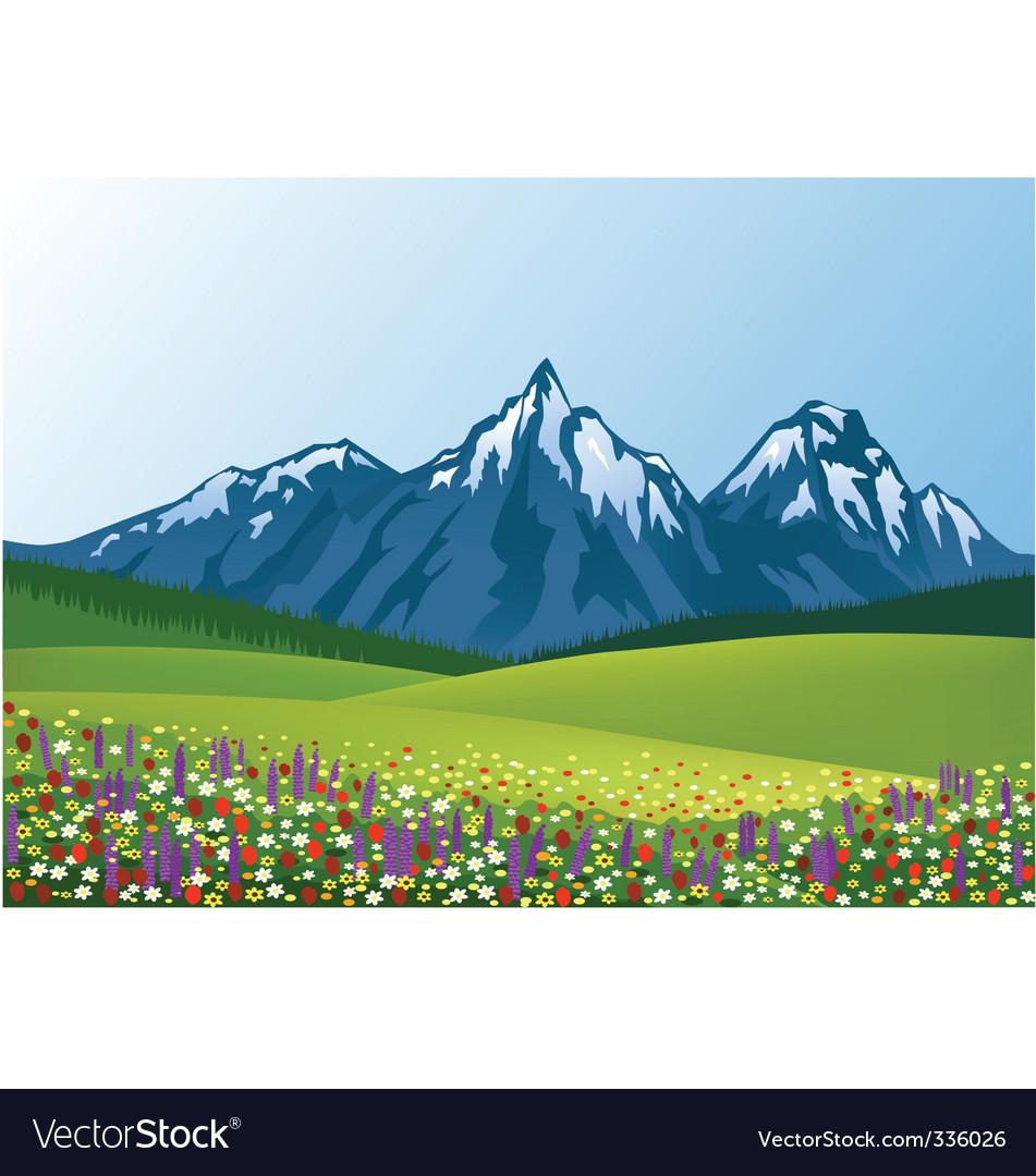 Flower field vector