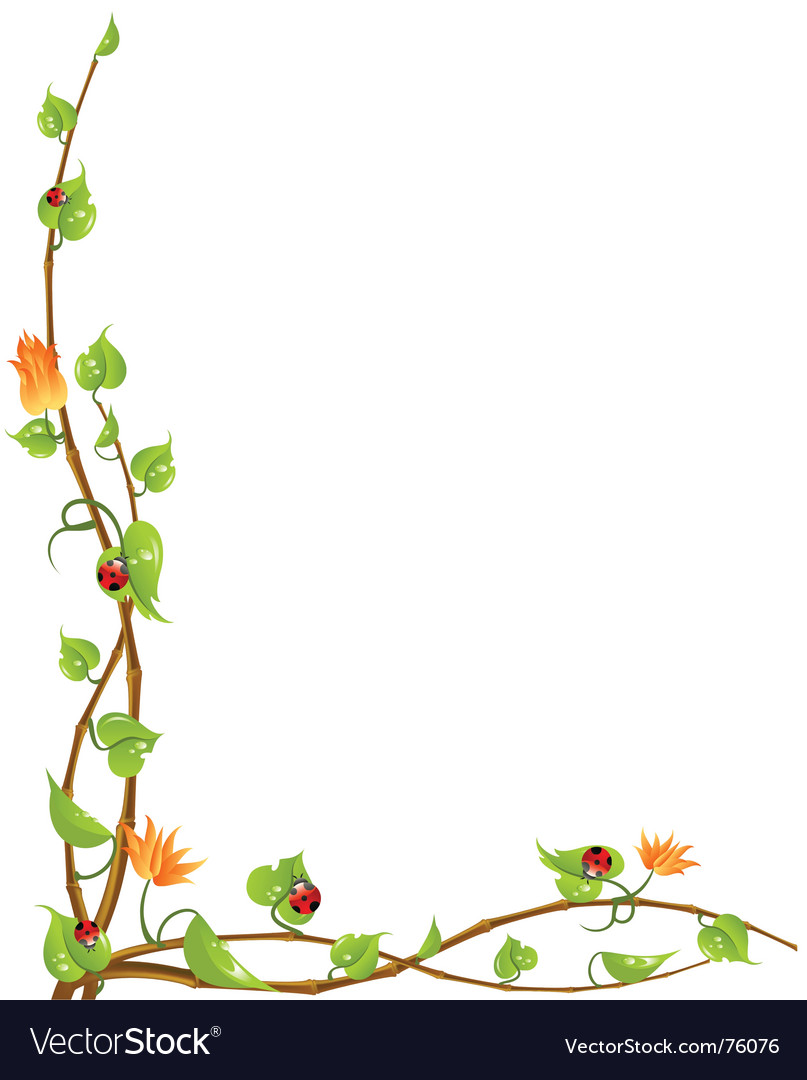 Nature vine vector by Forever - Image #76076 - VectorStock