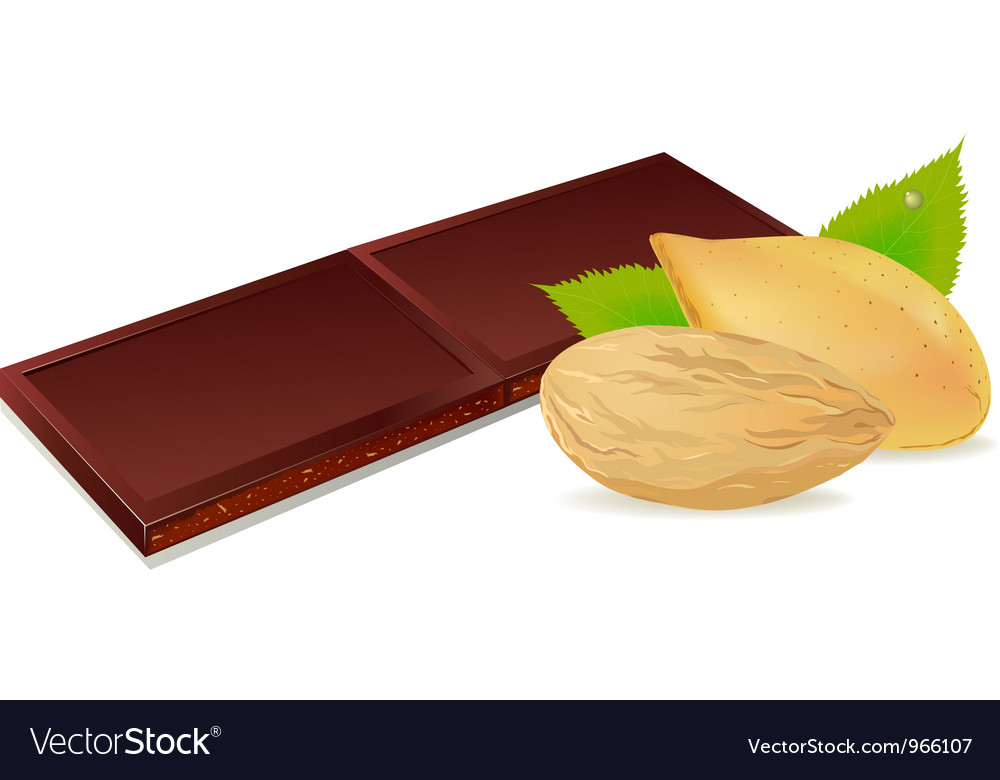 Chocolate and almonds vector