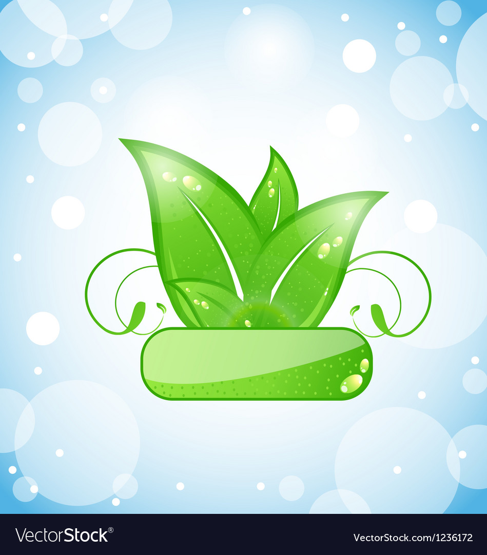 Green nature leaves on blue background vector