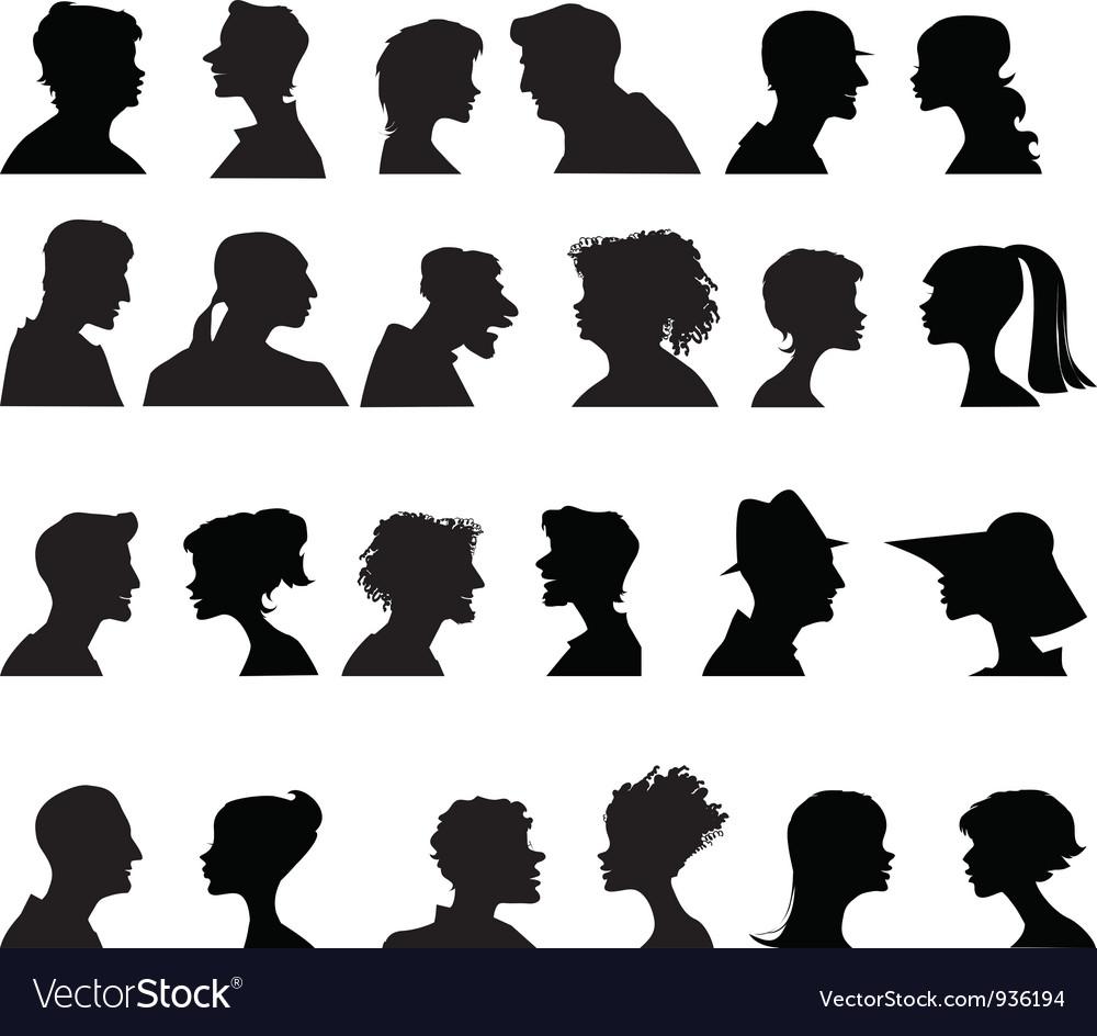 Profiles vector