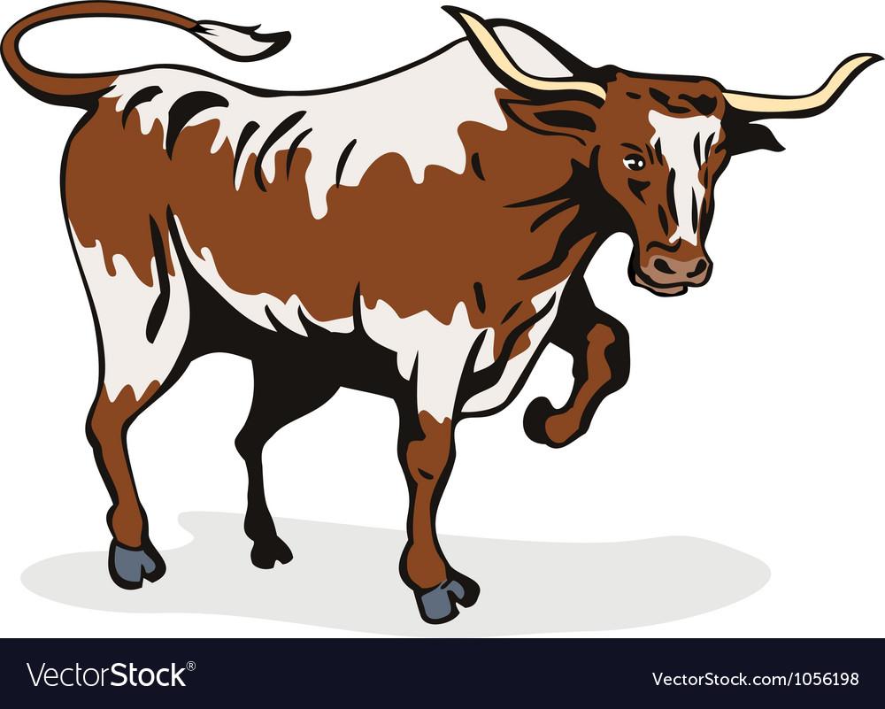 Texas longhorn bull vector