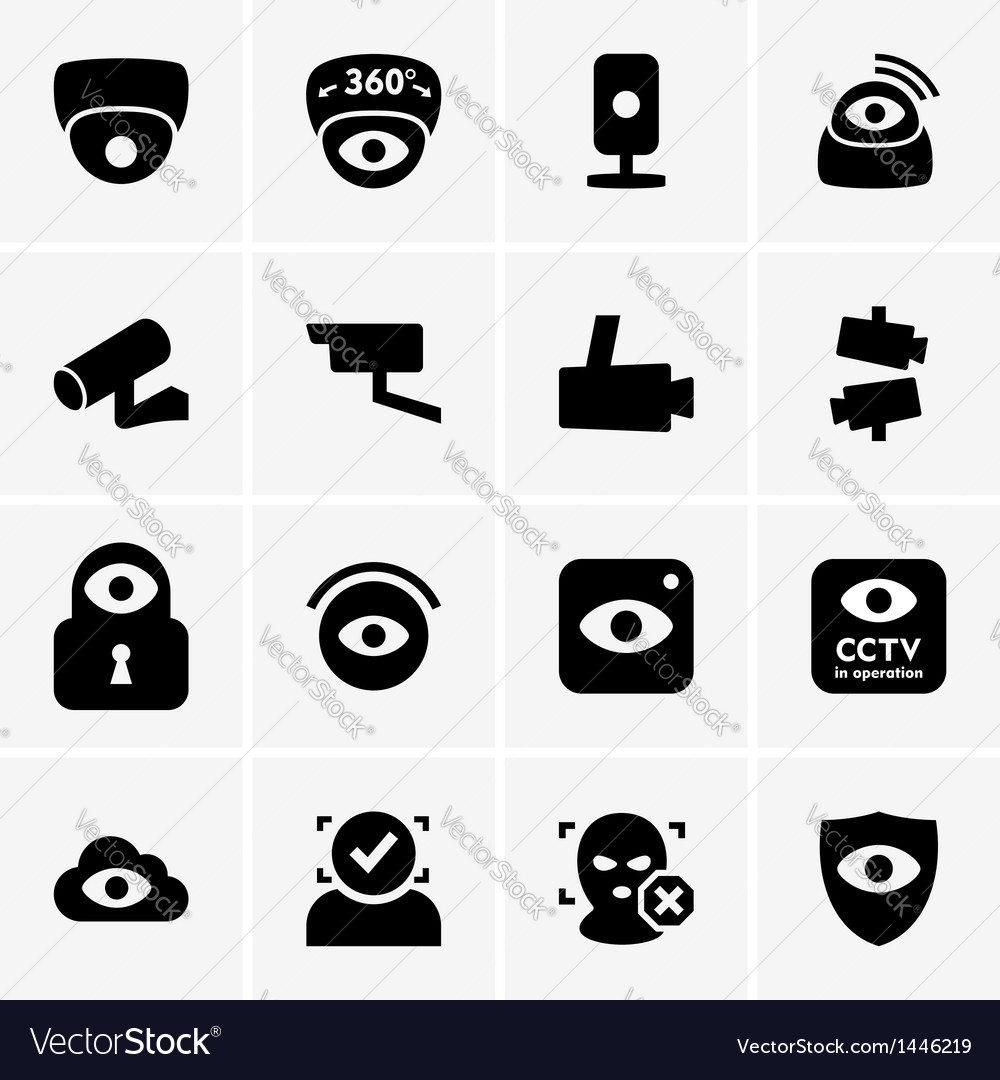 Video surveillance vector